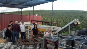 Tieton Cider  Juice processing